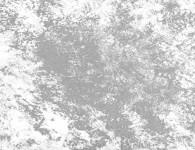 Felt-1080x495-2